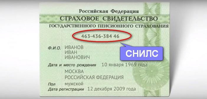 Что такое СНИЛС - расшифровка, как получить документ и как он выглядит, узнать свой номер через интернет онлайн в Москве 2018