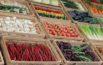 Овощи на лотках